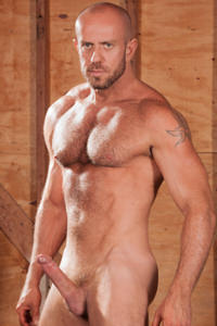 male muscle gay porn star Matt Stevens | hotmusclefucker.com