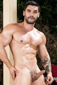 Picture of Arad Winwin