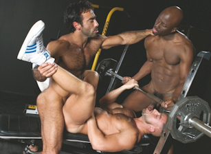 gay muscle porn clip: Manifesto - Francois Sagat & Huessein & Jay Black, on hotmusclefucker.com