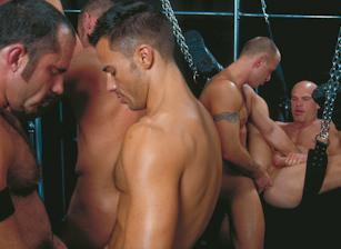 gay muscle porn clip: PleXus - Alex Steele & Andreas Stern & Brendan Austen & Jerek & Lance Gear & Michael Vincenzo & Shane Rollins & Tony Serrano, on hotmusclefucker.com