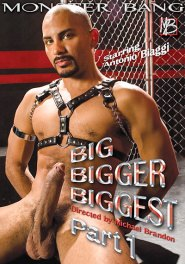Big Bigger Biggest 1 DVD Cover
