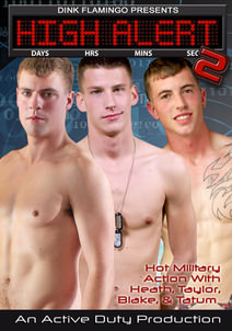 High Alert 2 DVD Cover