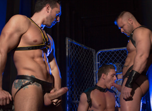 gay muscle porn clip: The URGE - Huntin For Ass - Alexander Gustavo & Austin Wolf & Jimmy Durano, on hotmusclefucker.com