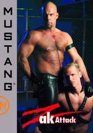 Zak Attack DVD Cover