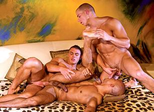 euro sex party videos