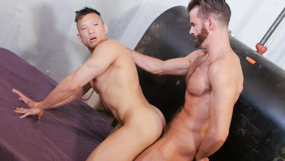 Peter Lee gay Porr