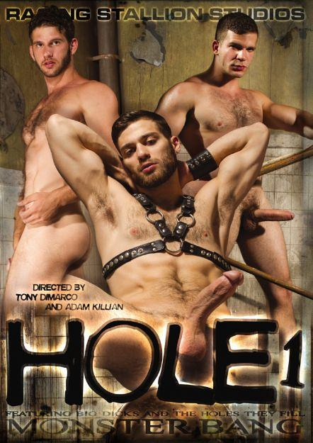 Hole #01 Dvd Cover