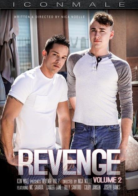 Revenge #02 Dvd Cover