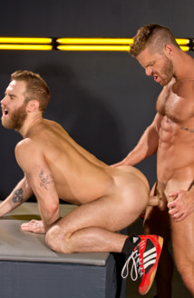 Cock Fight! Picture