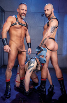 Leather Dogs Picture